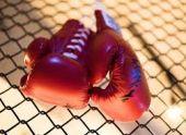 В Гагре прошел международный детский турнир по боксу
