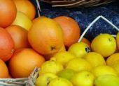 Кабмин Абхазии установил закупочные цены на цитрусовые