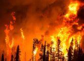 В Абхазии появились новые очаги пожаров в высокогорных районах