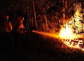 К тушению лесного пожара в Абхазии привлекают местных жителей
