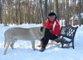 Президент РКФ Владимир Голубев призвал бороться с безответственным отношением к домашним собаками