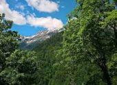 Туристка из России скончалась в Абхазии