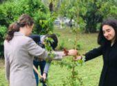 В Сухуме прошла акция «Сад Памяти»