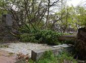 На Абхазию обрушился сильный ураган